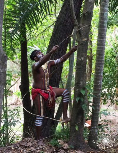 cadaghi-indigenous-arch-australia-tour